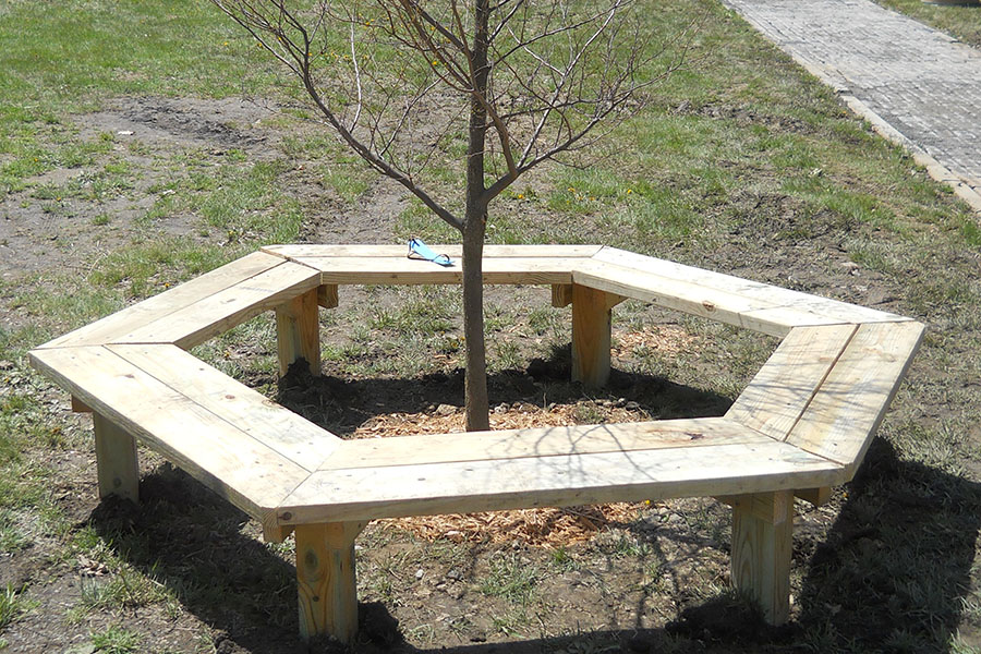 Tree Bench 2